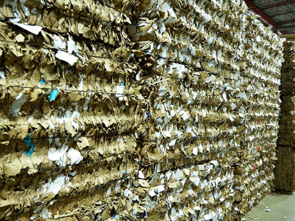 How Long Does Cardboard Take to Decompose?