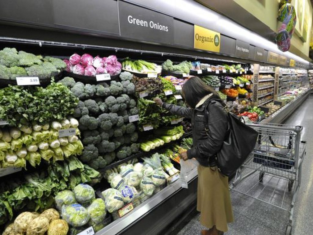 Paper or plastic? Canadian scientist at centre of grocery debate