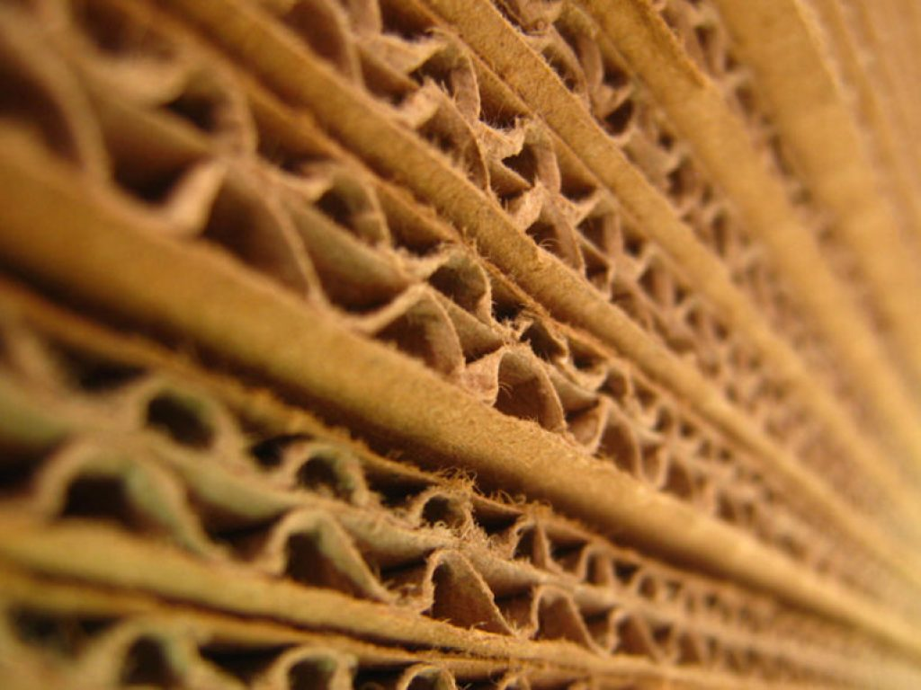 Innovating Corrugated Literally Demands Thinking Outside the Box
